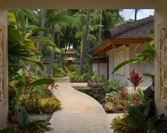 Tropical Landscape Tropical Design, Pictures, Remodel, Decor and Ideas - page 3
