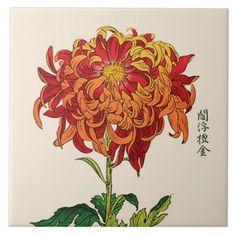 Chrysanthemum Drawing, Japanese Chrysanthemum, Chrysanthemum Flower, Asian Flowers, Japanese Flowers, Japanese Flower Tattoos, Japanese Illustration, Botanical Illustration, Crysanthemum Tattoo