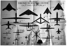 The Drone Survival Guide will teach you which ones can kill you and which ones are harmless