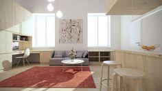 Micro loft _interior design concept