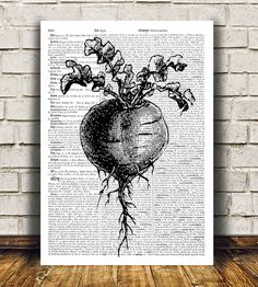 Kitchen poster Beetroot print Food art Vegetable by OneDictionary