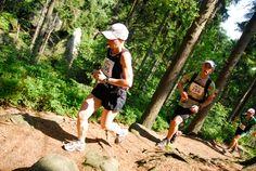 biegowe imprezy letnie 2013