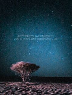 A picture of night sky from amrazing had always amazing, He is one of a great photografer and also influencer in social media. Then I added my favorite quran verse 2 : 152 I Will Remember You, Quran Verses, Night Skies, Social Media, Ads, My Favorite Things, Sayings, Amazing, Pictures