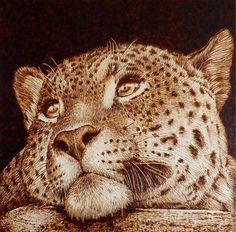 Once seen merely as a craft, pyrography is being increasingly recognised as a fine art form. Description from fineartamerica.com. I searched for this on bing.com/images