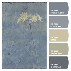 Instantly turn any picture into a palette with ColorSnap, created for you by Sherwin-Williams. Colour Pallette, Color Palate, Colour Schemes, Color Combinations, Beige Paint, Sherwin William Paint, Design Seeds, Exterior House Colors, Paint Colors For Home