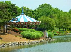 Carousel Nestled In The Trees Photograph by Emmy Marie Vickers