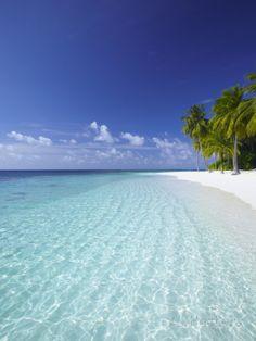 Tropical Island and Lagoon, Ari Atoll, Maldives, Indian Ocean, Asia Photographic Print by Sakis Papadopoulos at AllPosters.com. $33 18 x 24