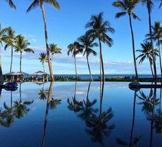 Palmtrees #vacation