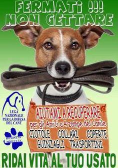 Non gettare, ridai vita al tuo #usato. La #LegadelCane di #Molfetta invita a #donare oggetti e materiali che non usi più, utili agli #animali bisognosi