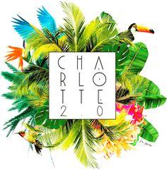 Charlotte 2.0