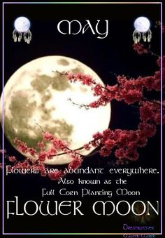 May 2014 is the Full Moon. It is known as the FLOWER MOON. Flowers are abundant everywhere. It is also known as the Full Corn Moon and Planting Moon. May Full Moon, May Moon, Shoot The Moon, Purple Love, Purple Colors, Purple Things, Purple Rain, Purple Stuff, Deep Purple