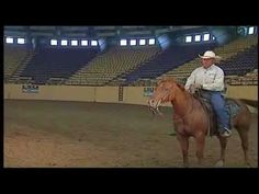 Horse Training: Lead Changes and Departures