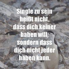 Single zu sein heißt nicht, dass dich keiner haben will, sondern dass dich nicht jeder haben kann.