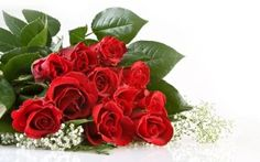 Toko Bunga Jagakarsa Florist di Jakarta Selatan, 0822-99148647   Toko Bunga Jagakarsa – Jual Aneka Karangan Bunga Ulang Tahun, Bunga Ucapan Selamat, Bouquet Spesial dan istimewa. Karangan bunga papan, bunga meja, bunga standing, bunga duka cita, dll. Toko Bunga Florist Jakarta. Telp/Whatsapp 0822-99148647, 0819-05954242 Air Balloon, Balloons, Best Freinds, Bouquet, Beautiful Red Roses, I 9, Belle Photo, Valentines Day, I Am Awesome
