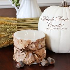 do you have a birch tree make birch bark candles, diy home crafts, repurposing upcycling, Make Birch Bark Candles perfect for the holidays or a hostess gift