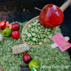 Fall Farm Sensory Bin for Toddlers and Preschoolers | The Jenny Evolution