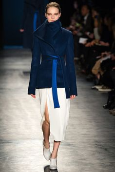 Altuzarra | Fall 2014 Ready-to-Wear Collection | Style.com