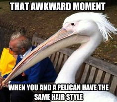 That awkward Moment #hairclub #badhairday