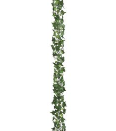 Bloom Room Med Sage Ivy Chain Garland - Floral & Wedding - Floral - Floral Stems, Sprays & Bushes at Hanging Flowers, Fake Flowers, Silk Flowers, Photoshop, Family Tree Art, Faux Flower Arrangements, Ivy Plants, Architecture Collage, Floral Supplies