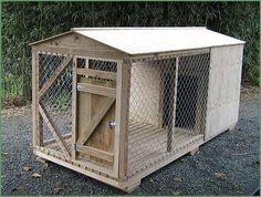 Titoki Sawmill Timber Dog Kennel and Run