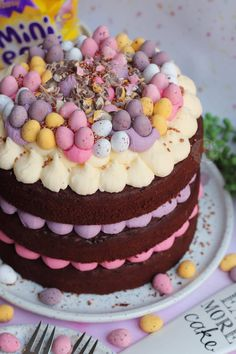 Let the Mini Egg obsession continue with my Mini Egg Chocolate Cake! ❤️😍 A Three-Layer Mini Egg Chocolate Cake with Pastel Vanilla… Mini Eggs Cake, Easter Egg Cake, Mini Cakes, Baking Recipes, Cake Recipes, Dessert Recipes, Chocolate Easter Cake, Lindt Chocolate, Janes Patisserie