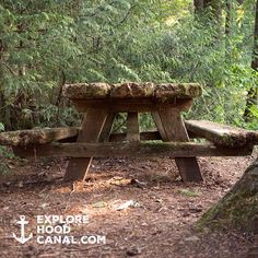 It's time to picnic. See more of our favorite stops on our Instagram: https://instagram.com/explorehoodcanal/ #staircase #staircasecampground #olympicNP @olympicnationalpark #wildsideWA #explorehoodcanal #hoodcanal #nationalpark #campvibes #olympicpeninsula #FindYourPark #nature #pnwest #nationalparkservice #upperleftusa