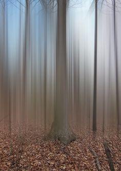 Disturbing the spirits - autumn | photography . Fotografie . photographie | artwork: Ellen Jantzen |