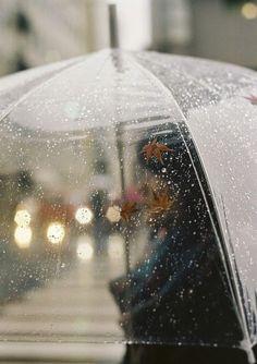 rain + autumn leaves on a clear umbrella Walking In The Rain, Singing In The Rain, Rainy Morning, Rainy Days, Rainy Mood, Clear Umbrella, Rain Umbrella, Transparent Umbrella, Bubble Umbrella
