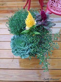 Floral Design, Floral Wreath, Wreaths, Plants, Home Decor, Floral Crown, Decoration Home, Door Wreaths, Room Decor