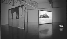 Douglas Gordon, Play Dead; Real Time, 2003. Video installation with two screens, monitor, and colour video, 21 min. loop and 11 min. loop, dimensions variable.