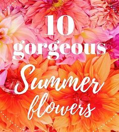 WHAT ARE YOUR 10 FAVORITE SUMMER FLOWERS? Clematis | Craspedia | Dahlias…