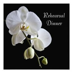 =>quality product          Orchid on Black Wedding Rehearsal Dinner Invite           Orchid on Black Wedding Rehearsal Dinner Invite We have the best promotion for you and if you are interested in the related item or need more information reviews from the x customer who are own of them before ...Cleck link More >>> http://www.zazzle.com/orchid_on_black_wedding_rehearsal_dinner_invite-161964867290971253?rf=238627982471231924&zbar=1&tc=terrest