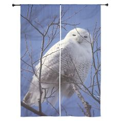 """Snowy White Owl 84"""" Curtains on CafePress.com/DianeClancy is  #sold off to Wisconsin #arctic #bird"""