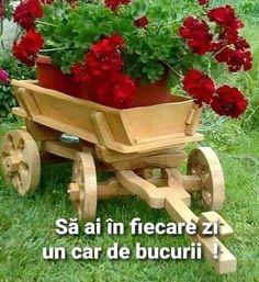 Wheelbarrow, Garden Tools, Flower Arrangements, Flowers, Jenni, Diana, Animal, Coffee, Decor