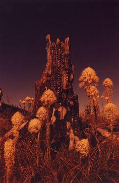 Irinarozovsky-photography-itsnicethat-10