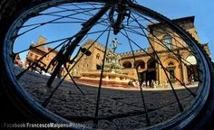 [gli amici di Iperbole fotografano] Giornata ideale per un in giro in bici in città   foto di Francesco Malpensi