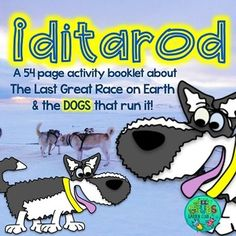 Did You Know That During The Iditarod Race A Single Musher Will Use Over 2000