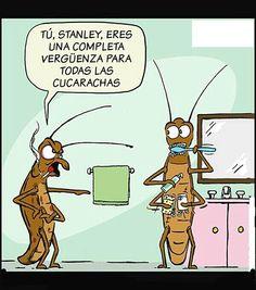 Humor............