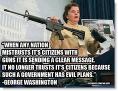 Amendment Rights quotes | gun-control-george-washington-quote-such-a-government-has-evil-plans