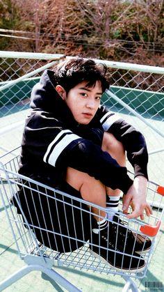 EXO Chanyeol in a shopping cart. Kpop Exo, Exo Chanyeol, Exo Ot12, Happy Playlist, Exo Facts, Exo Lockscreen, Z Cam, Kim Minseok, Social Trends