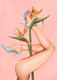 Pink plant legs illustration in Illustration