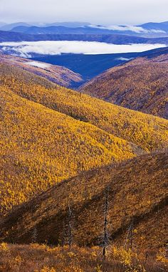 Top of the World Highway, Yukon, Canada, photo: Yves Marcoux...✈...