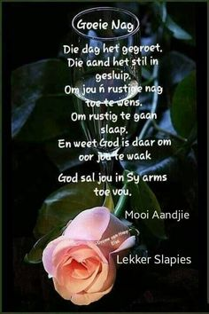 Evening Greetings, Good Night Greetings, Good Night Blessings, Goeie Nag, Goeie More, Afrikaans Quotes, Good Night Quotes, Beautiful Roses, Qoutes