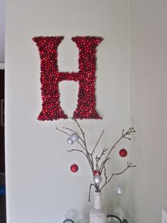 Cranberry letter... perfect way to spruce up an entryway for the holidays!