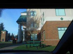 washington state library