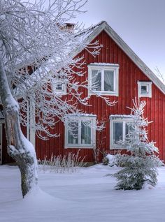 | Red and white.....Scandinavian | Snowy cottage in Smaland, Sweden 03 |  Copyright: Henner Damke