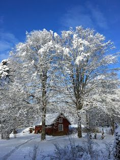 e Beautiful Day, Beautiful Pictures, White Paints, Night Time, Winter Wonderland, Fairy Tales, Clouds, Outdoor, Outdoors