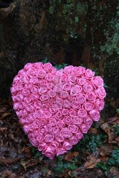 large all rose heart tribute Sympathy Gift Baskets, Sympathy Gifts, Funeral Arrangements, Flower Arrangements, Sympathy Flowers, Losing A Loved One, Dado, Pink Roses, Heart Shapes
