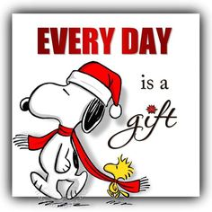 Every day is a gift Snoopy Charlie Brown Quotes, Charlie Brown Y Snoopy, Charlie Brown Christmas, Peanuts Cartoon, Peanuts Snoopy, Peanuts Christmas, Xmas, Christmas Ideas, Snoopy Pictures