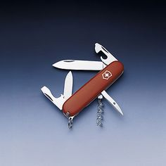 Swiss Army Knife. The Swiss make such nice objects.